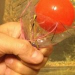 Как сделать гравировку в домашних условиях на стекле