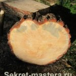 Вироби із дерева своїми руками
