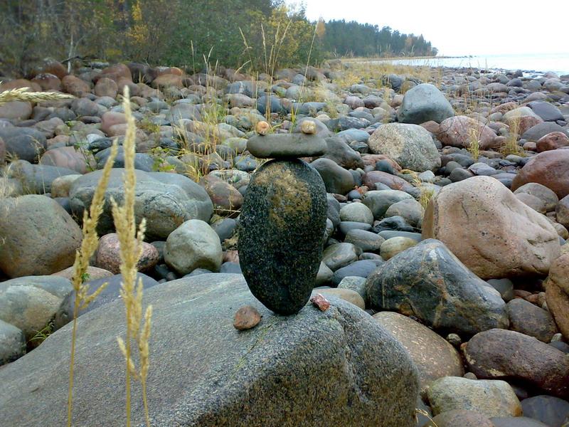 Как сделать сад камней своими руками