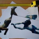 Печатаем фотографии