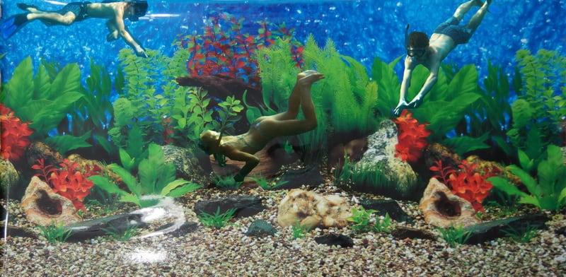 Задний фон для аквариума  фото 160