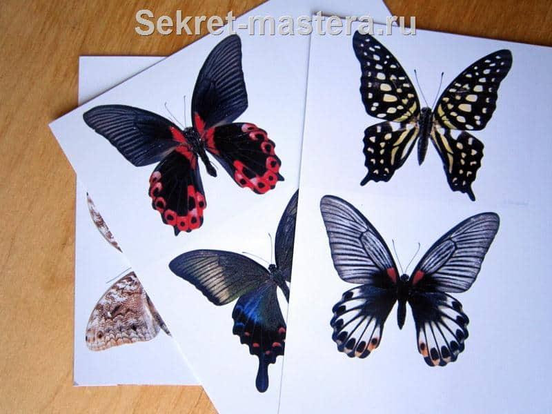 Как сделать бабочку на фото