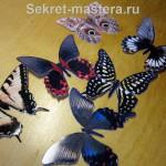 Своими руками большая бабочка 12
