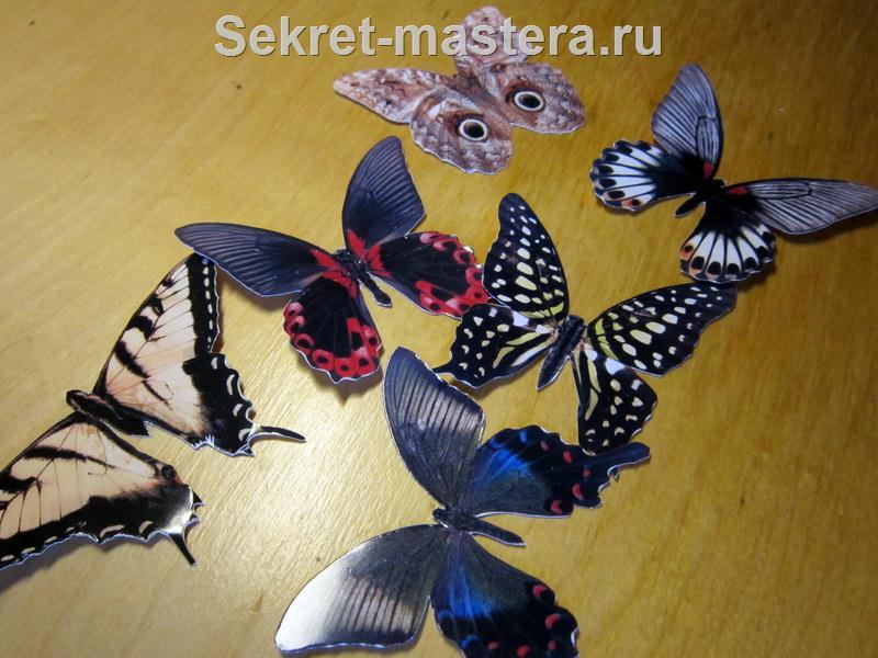 Сайт учителей биологии МБОУ Лицей 2 города Воронежа - Внешнее дыхание