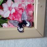 Бабочка на фотообоях