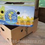 Две половинки банановой коробки, нас интересует внутренняя коробка