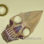 Кости лба приклеены к черепу