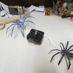 Поделка подвижные пауки